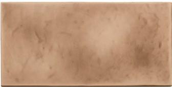 Bronze Gloss